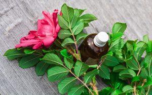 Stosowanie olejków w codziennej pielęgnacji twarzy i ciała zredukuje wypryski.